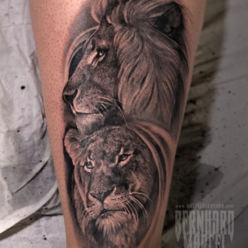 celine_lions